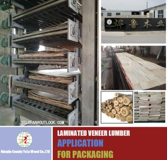 lvl wooden plywood for packing raw material promotion timber product